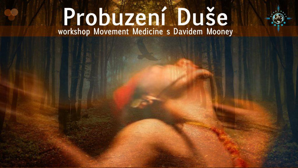 Probuzení Duše workshop s Davidem Mooney, Movement Medicine