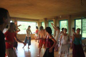 Dansea Haluzice akce