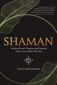 Shaman kniha cover